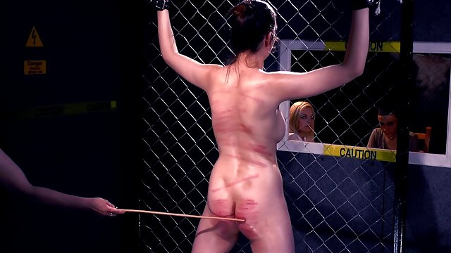 Amateur rubia YPP porno español latino gratis